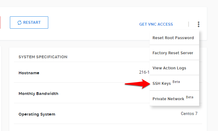 Navigation through SSH Key Management page in the VPS Management Panel